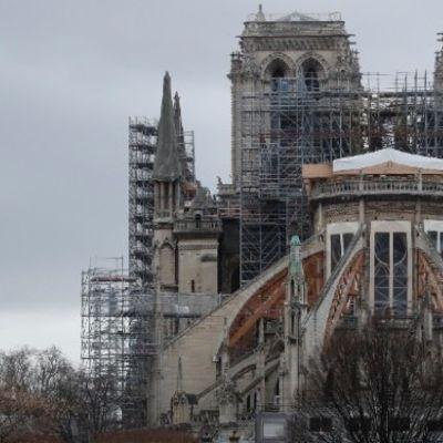 'Sponsor a gargoyle' to help rebuild Notre-Dame Cathedral
