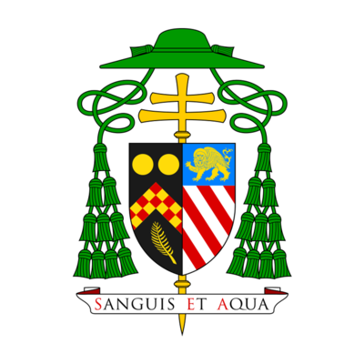 Homily at the Launch of Synod 2021-23